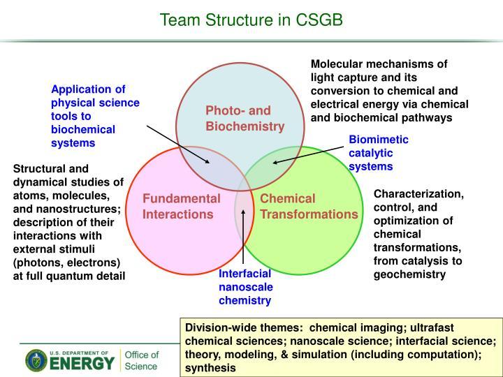 Team Structure in CSGB