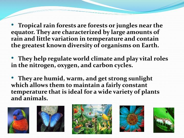 Tropical rain forests are forests or jungles near the equator. They are characterized by large amounts of rain and little variation in temperature and contain the greatest known diversity of organisms on Earth.