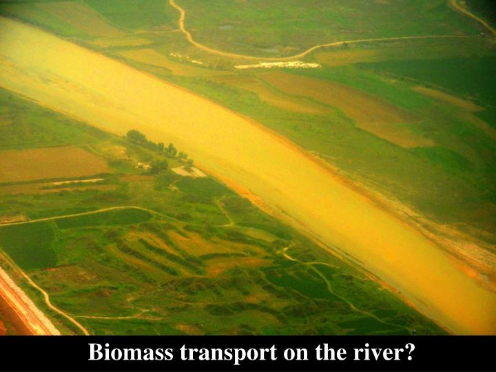 Biomass transport on the river?