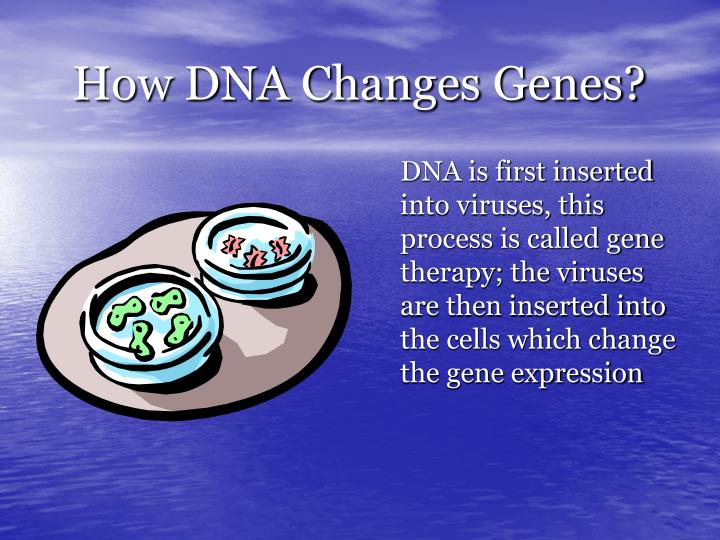 How DNA Changes Genes?