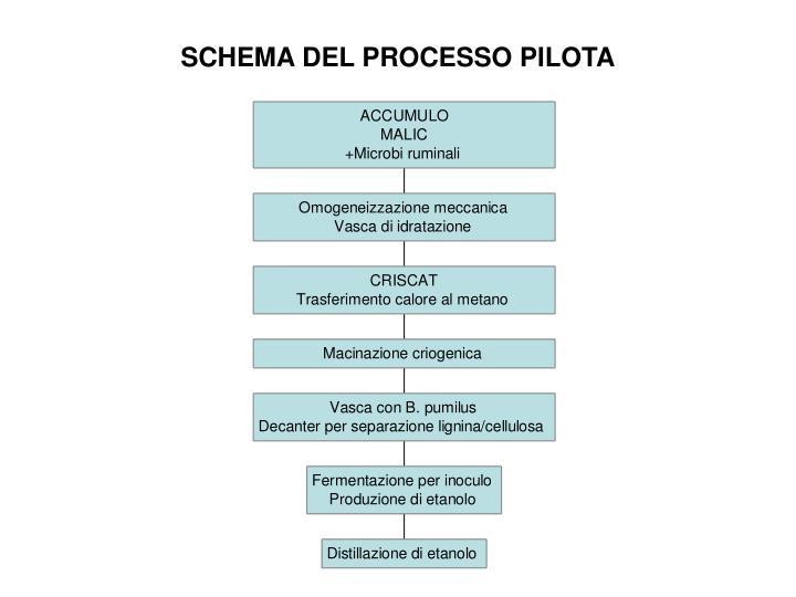 SCHEMA DEL PROCESSO PILOTA