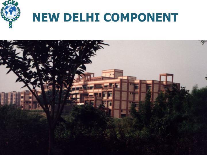 NEW DELHI COMPONENT