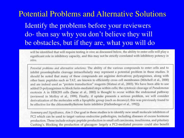 Potential Problems and Alternative Solutions