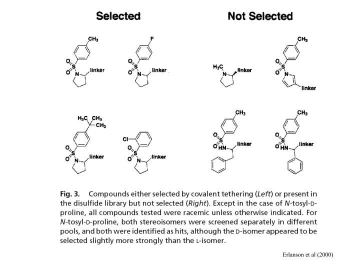 Erlanson et al (2000)