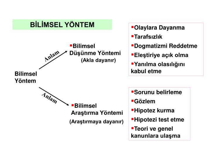 BLMSEL YNTEM