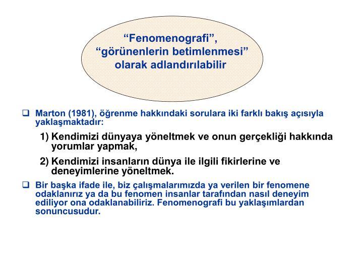 Fenomenografi,