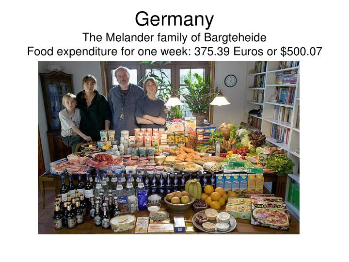 Germany the melander family of bargteheide food expenditure for one week 375 39 euros or 500 07