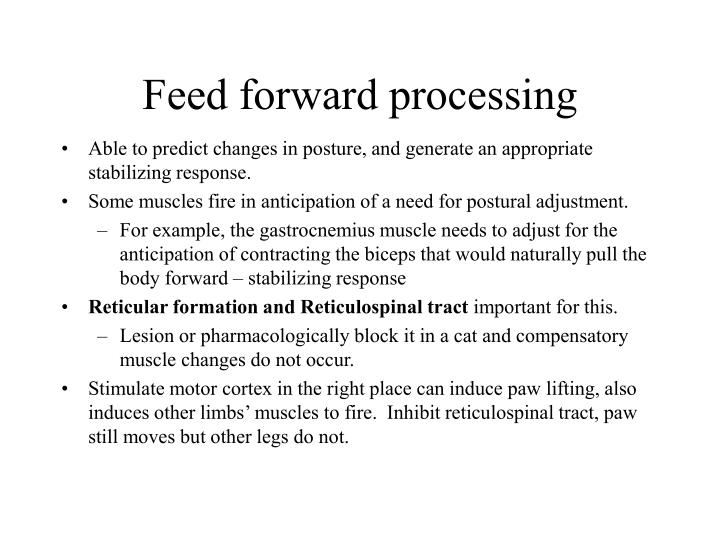 Feed forward processing