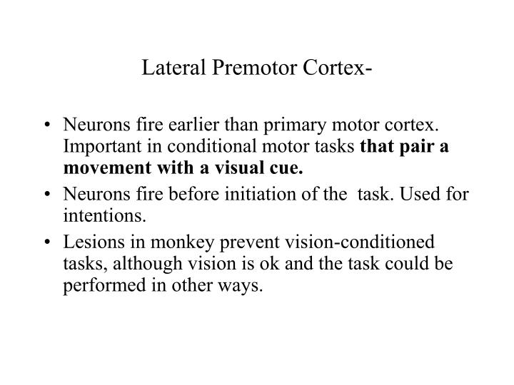 Lateral Premotor Cortex-