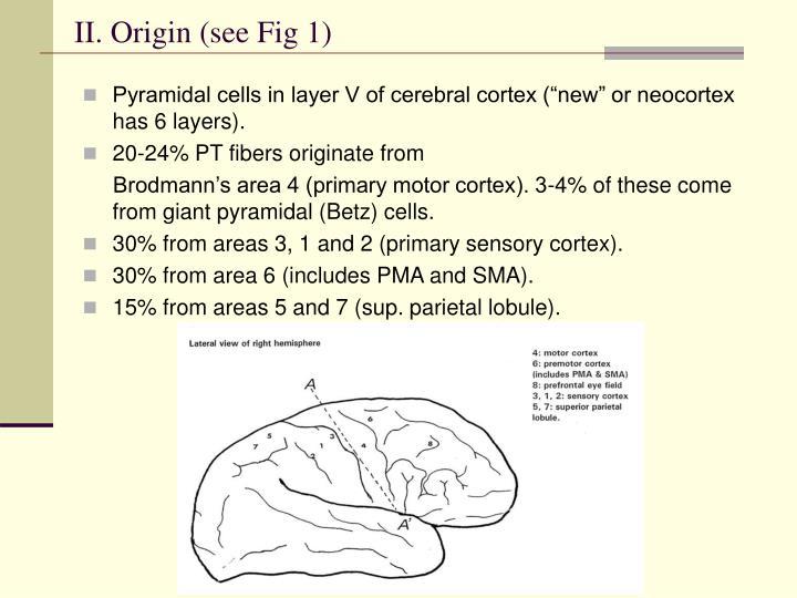 II. Origin (see Fig 1)