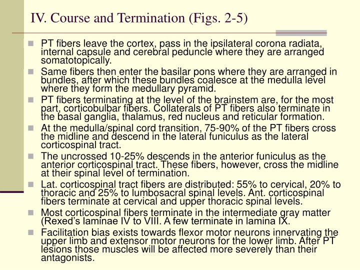 IV. Course and Termination (Figs. 2-5)