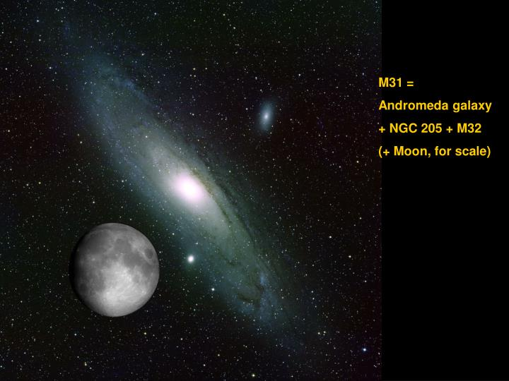 M31 =