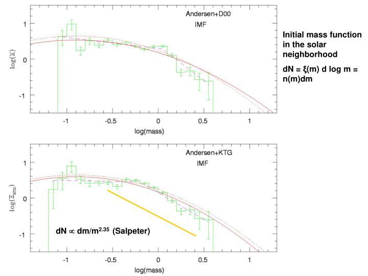 Initial mass function in the solar neighborhood