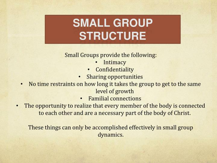 SMALL GROUP STRUCTURE