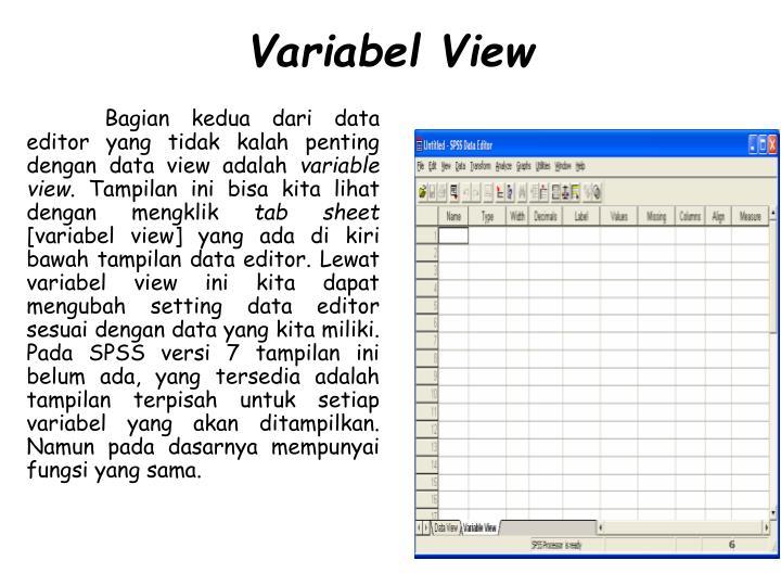 Variabel View