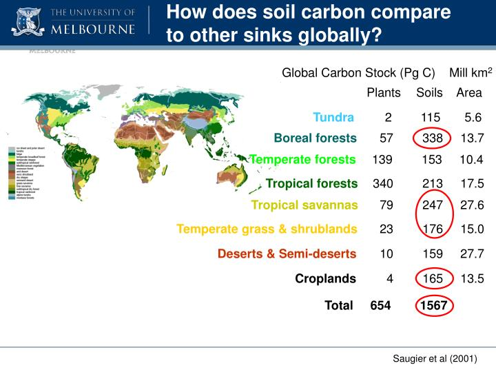 How does soil carbon compare to other sinks globally?