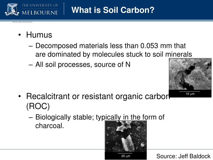 What is Soil Carbon?