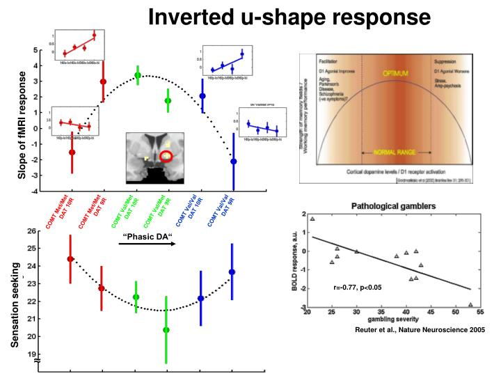 Slope of fMRI response
