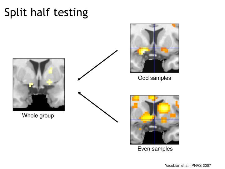 Split half testing