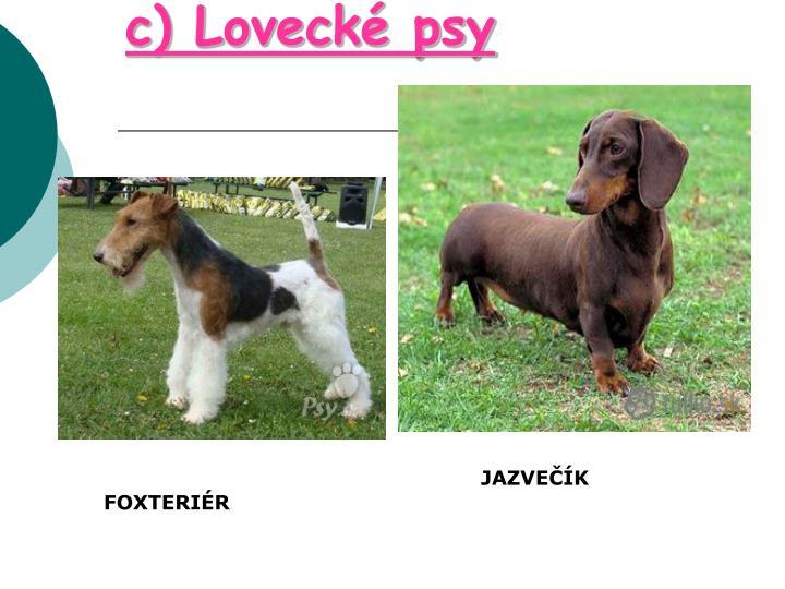 c) Lovecké psy