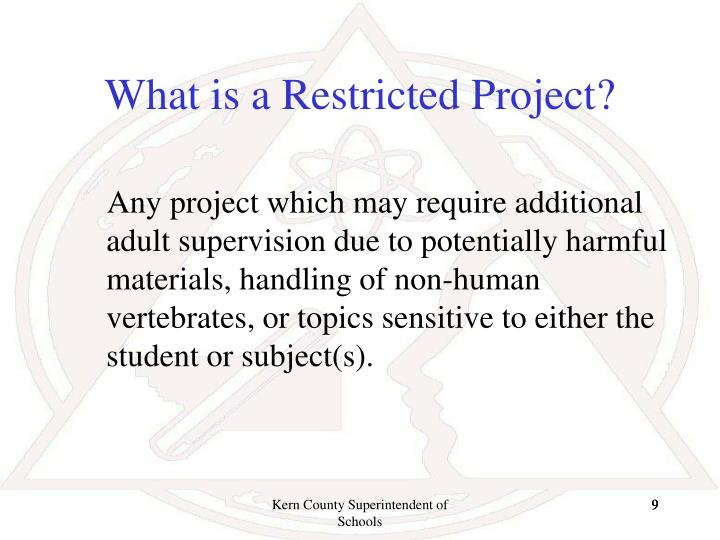 What is a Restricted Project?