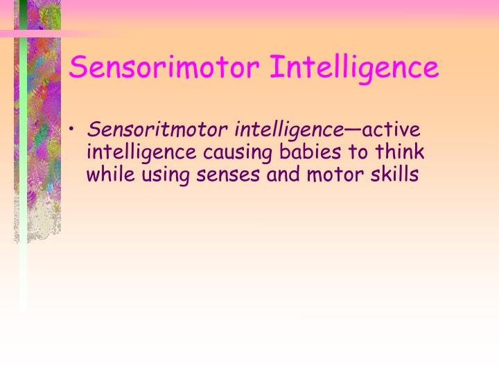 Sensorimotor Intelligence