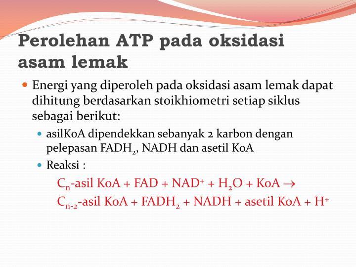 Perolehan ATP pada oksidasi asam lemak