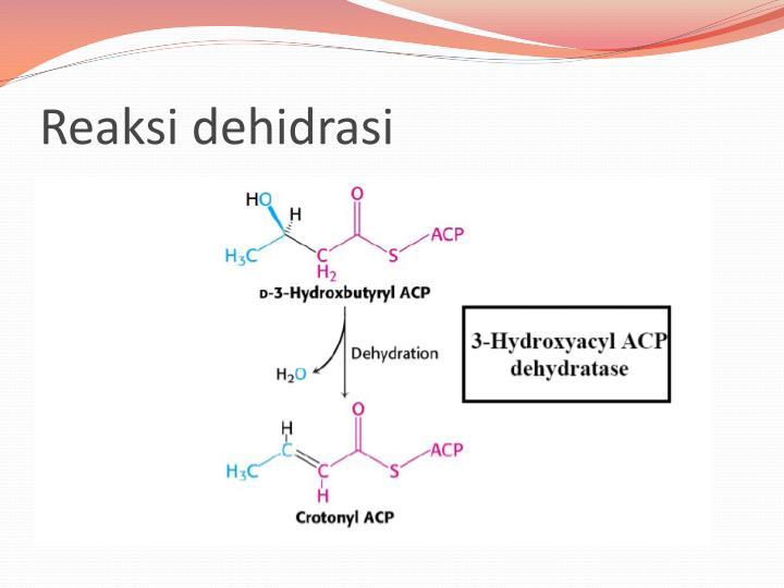 Reaksi dehidrasi