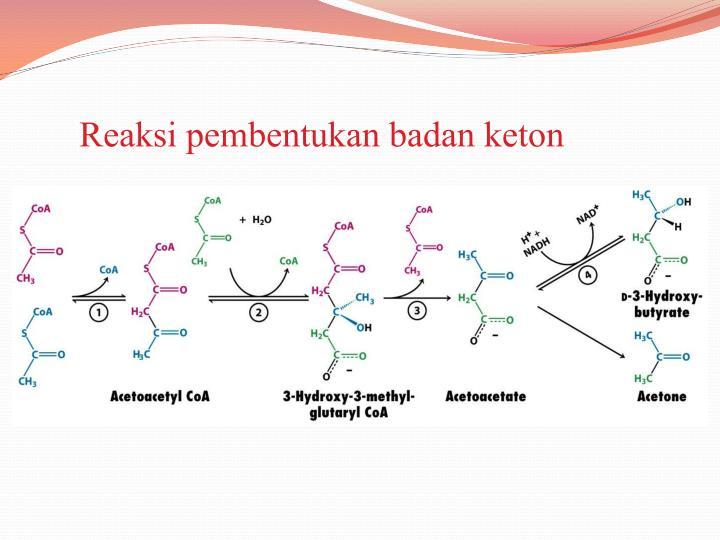 Reaksi pembentukan badan keton