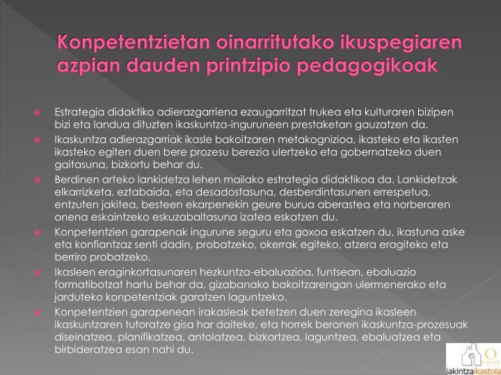 Konpetentzietan oinarritutako ikuspegiaren azpian dauden printzipio pedagogikoak