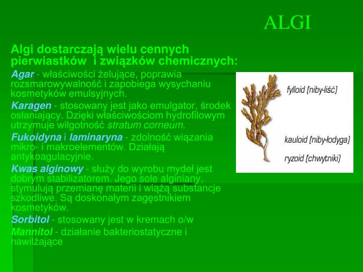 Algi dostarczają wiel