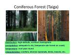 coniferous forest taiga
