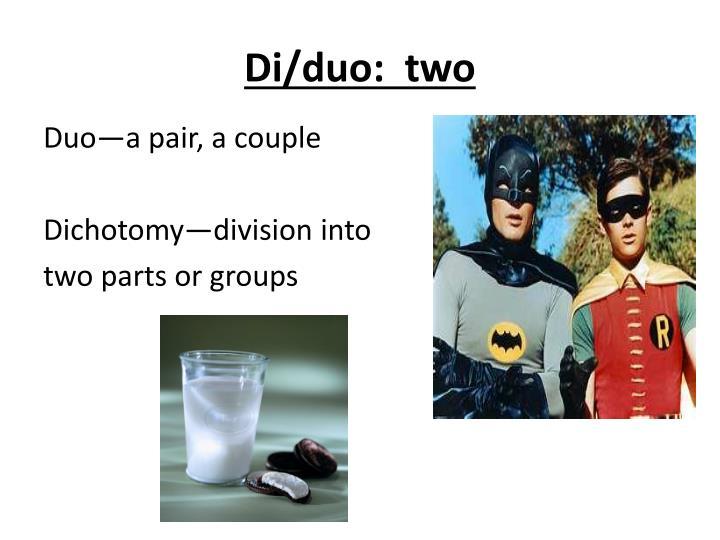 Di/duo:  two