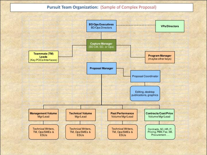 Pursuit Team Organization: