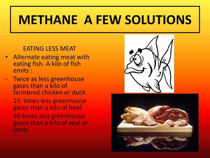 METHANE  A FEW SOLUTIONS