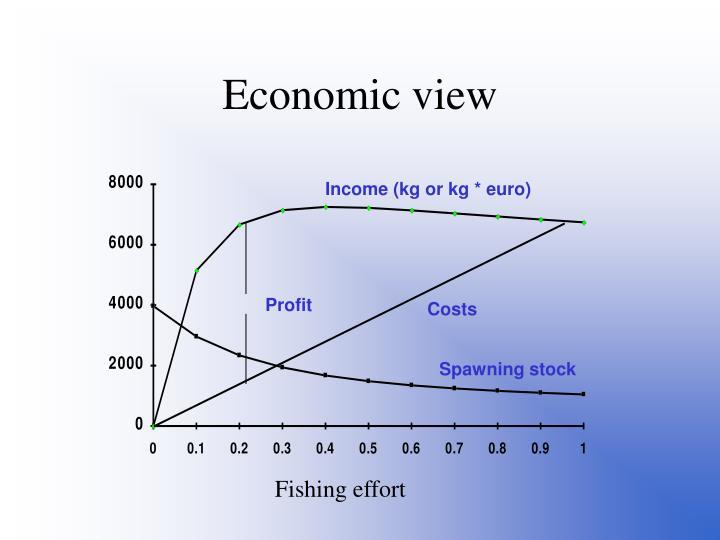 Economic view