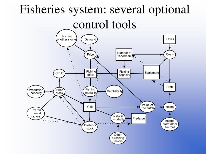 Fisheries system: several optional control tools