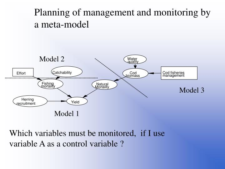 Planning of management and monitoring by