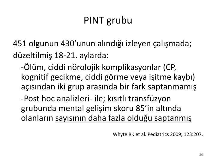 PINT grubu