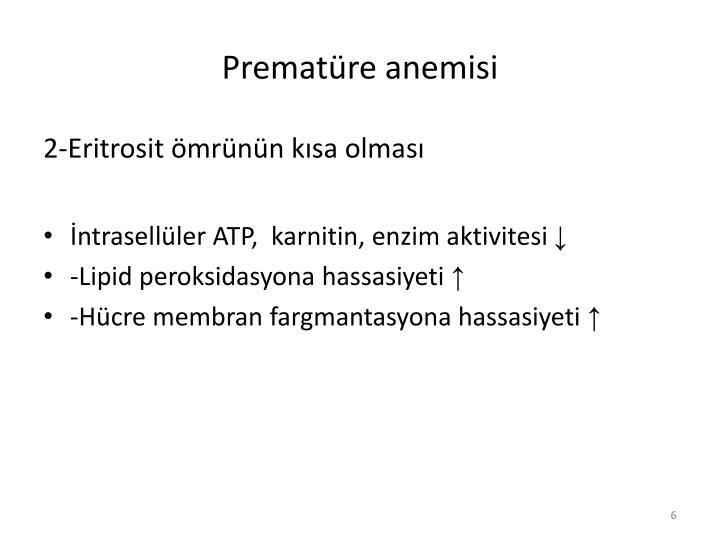 Prematüre anemisi