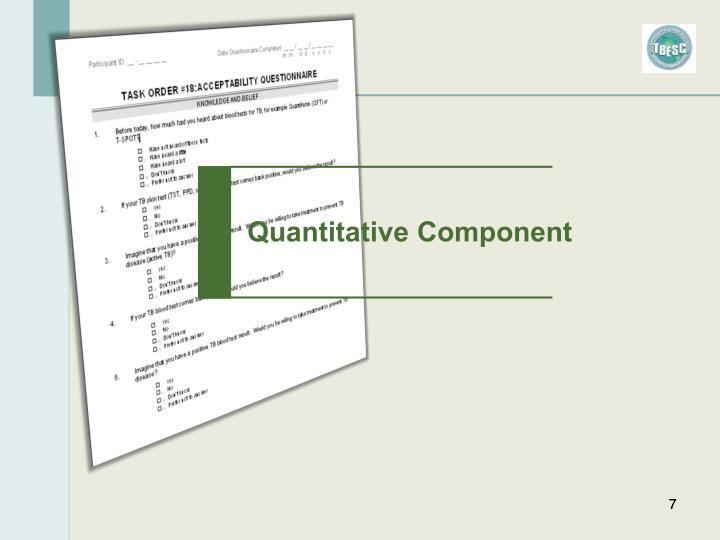 Quantitative Component