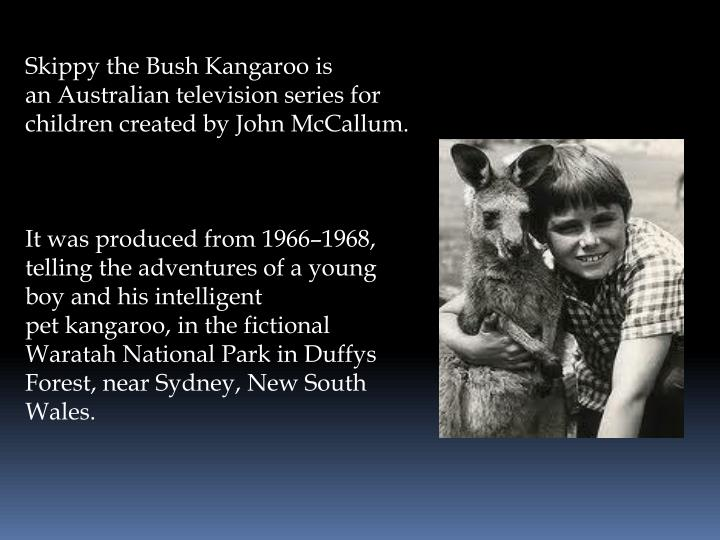 Skippy the Bush Kangaroo is an Australian television series for children created by John McCallum.