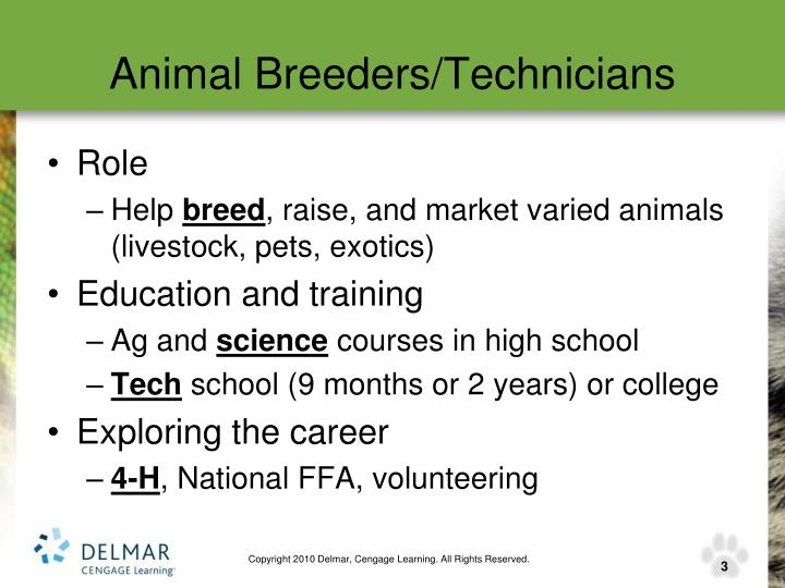 Animal Breeders/Technicians
