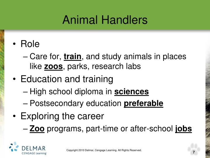 Animal Handlers