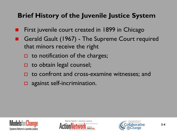 Brief History of the Juvenile Justice System