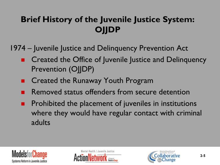 Brief History of the Juvenile Justice System: OJJDP