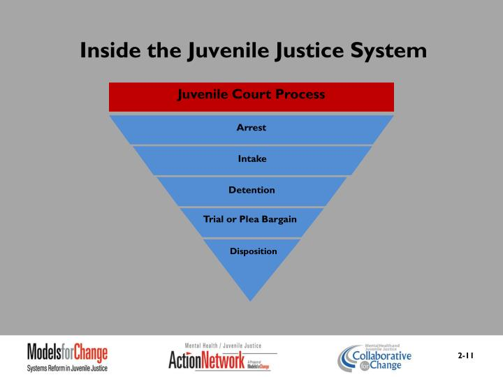 Inside the Juvenile Justice System