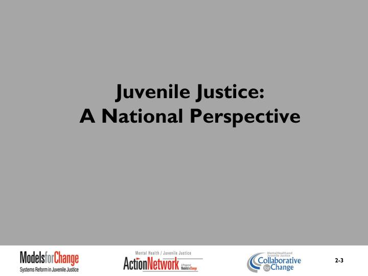 Juvenile justice a national perspective