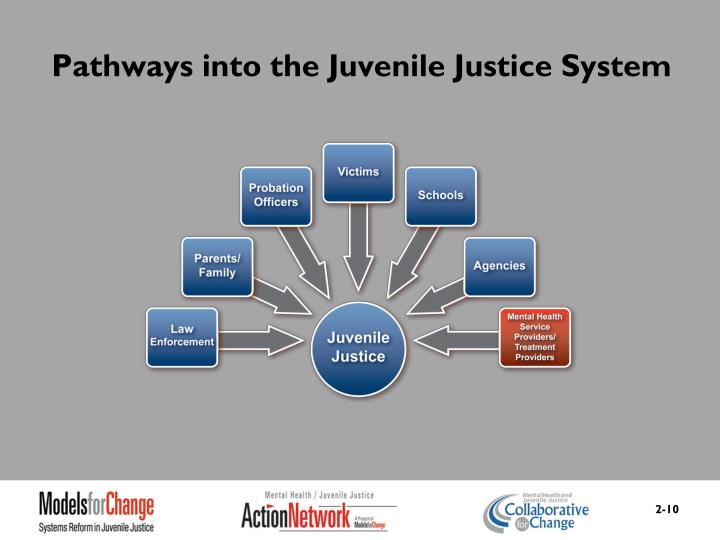 Pathways into the Juvenile Justice System