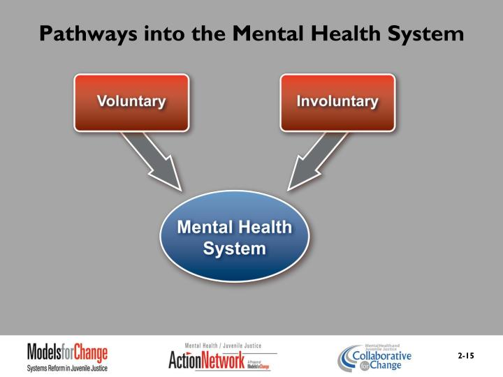 Pathways into the Mental Health System